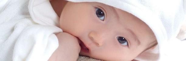 備孕四原則 生個健康寶寶