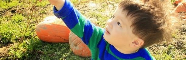 如何養育不哭鬧的小孩(分享在美國養孩子的媽媽經驗 下篇)